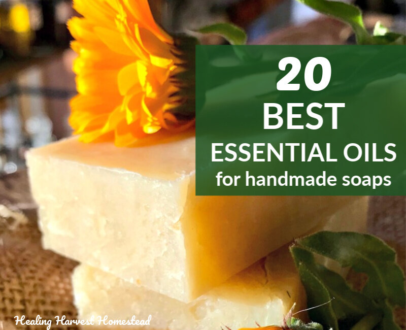 20 Best Essential Oils To Scent Handmade Soap Naturally And Some Essential Oil Blends For Soap You Ll Love All Posts Healing Harvest Homestead