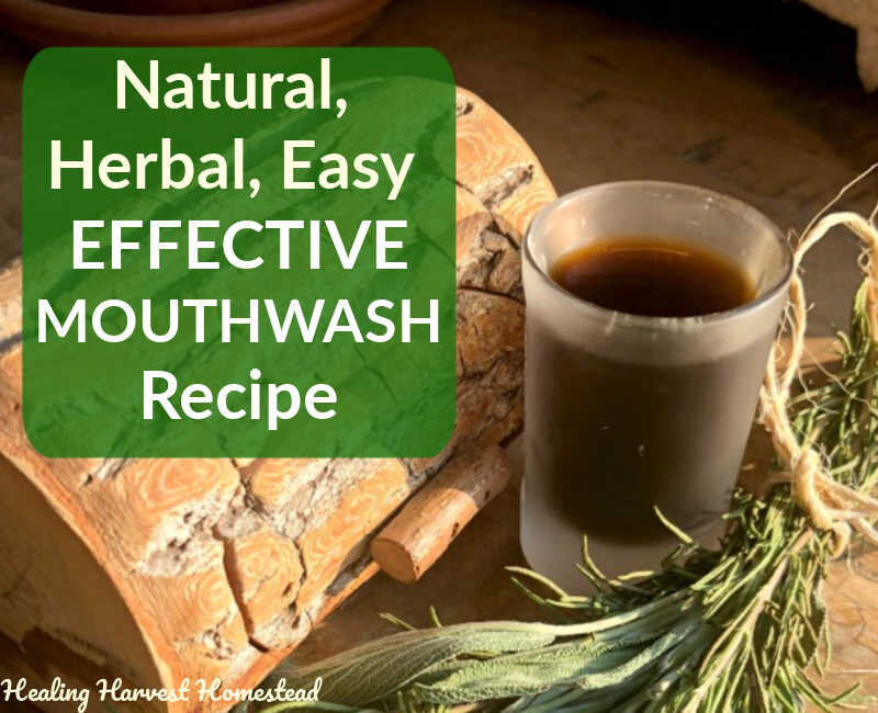 How to Make Your Own Herbal Mouthwash That WORKS! (It's Tasty and Amazing)