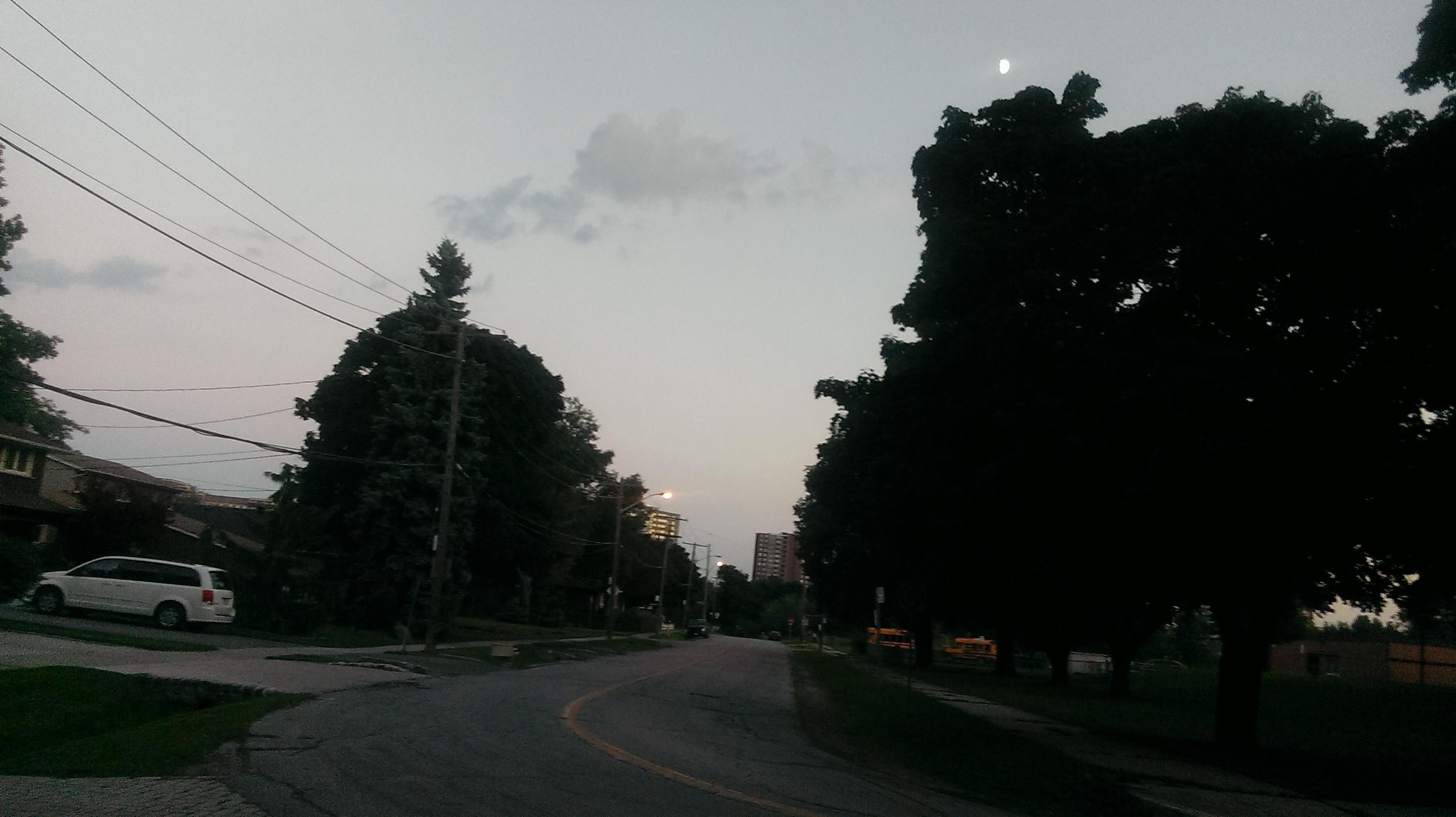 IMAG0666[1]