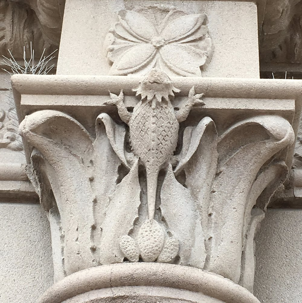 Horny toads climb the cast stone facade of St. Augustine cathedral downtown. The entire facade shows its sense of place with prickly pear, agaves and saguaros, as well as the lizards.   The cast-stone facade was designed in 1928 by D.B. DuBois, Henry Jaastad and E.D. Herreras.
