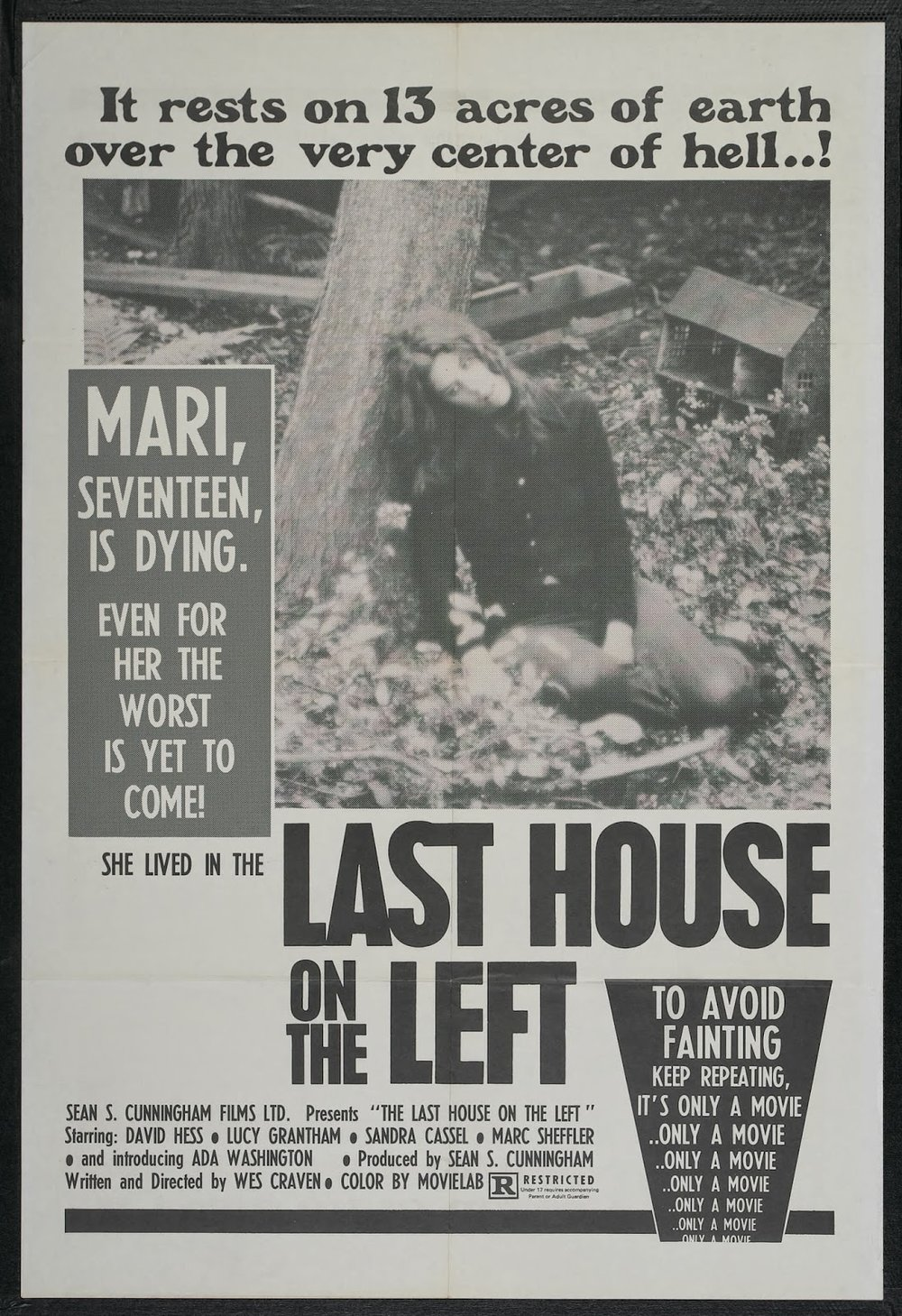 THE LAST HOUSE ON THE LEFT - American Poster.jpeg