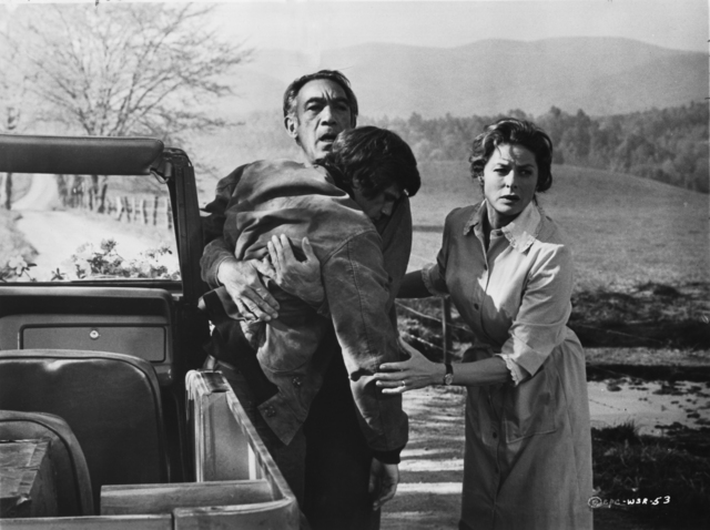 A_Walk_in_the_Spring_Rain_Anthony_Quinn_Tom_Holland_Ingrid_Bergman.JPG