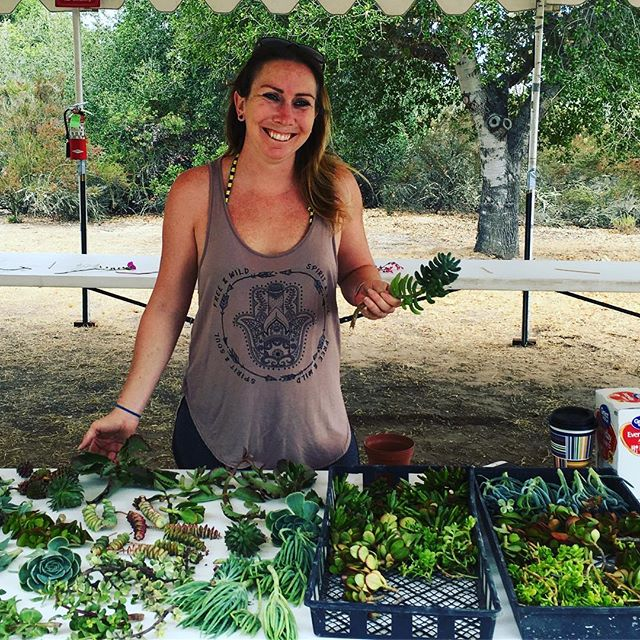 Join @thesucculentqueen for a free succulent workshop until 12:30pm 🌵🌱