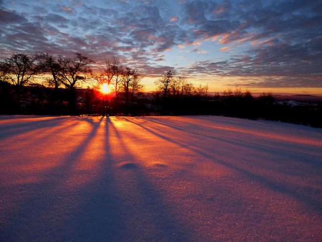 solstice newsletter.png