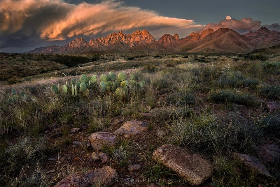 Approaching Storm Organ Mountains, Southern New Mexico Photo by Wayne Suggs Photography