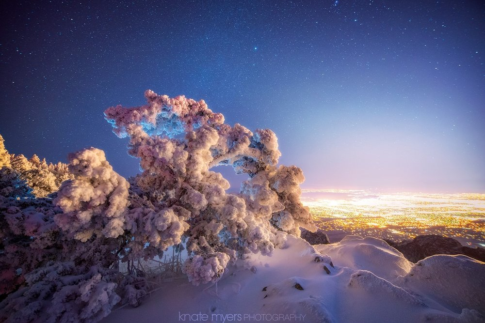 A frozen tree bent over from the weight of snow overlooking Albuquerque, NM. Taken from 10k feet on top of the Sandia Mountains last winter. Photo by Knate Myers   http://knatemyers.zenfolio.com/