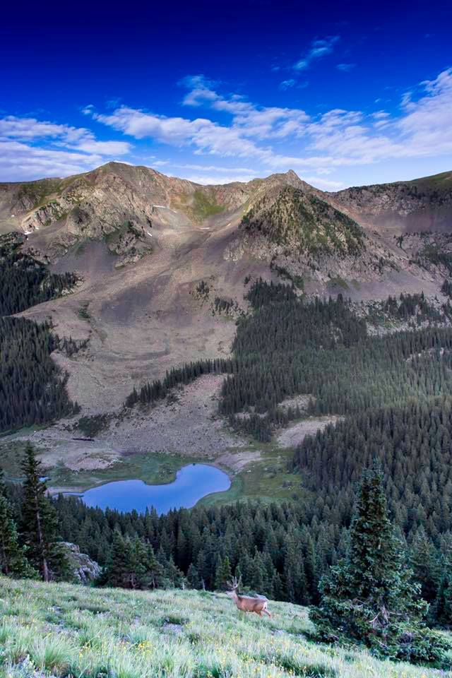 The hike up Wheeler Peak, New Mexico's highest point at 13,159 @jemeryphoto
