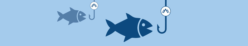 small to med fish.jpg