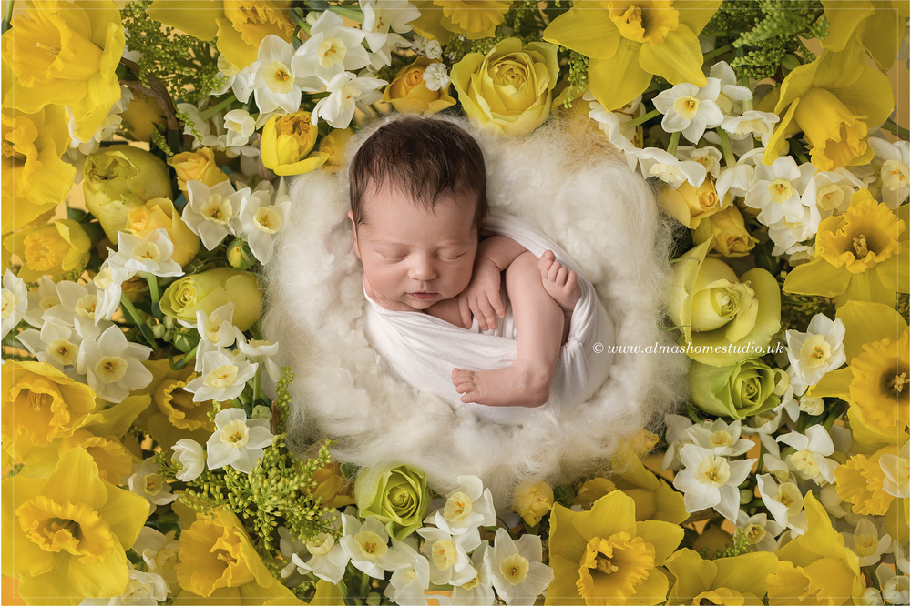 Alma's Home Studio - Award winning Newborn photographer based in Blandford , Dorset
