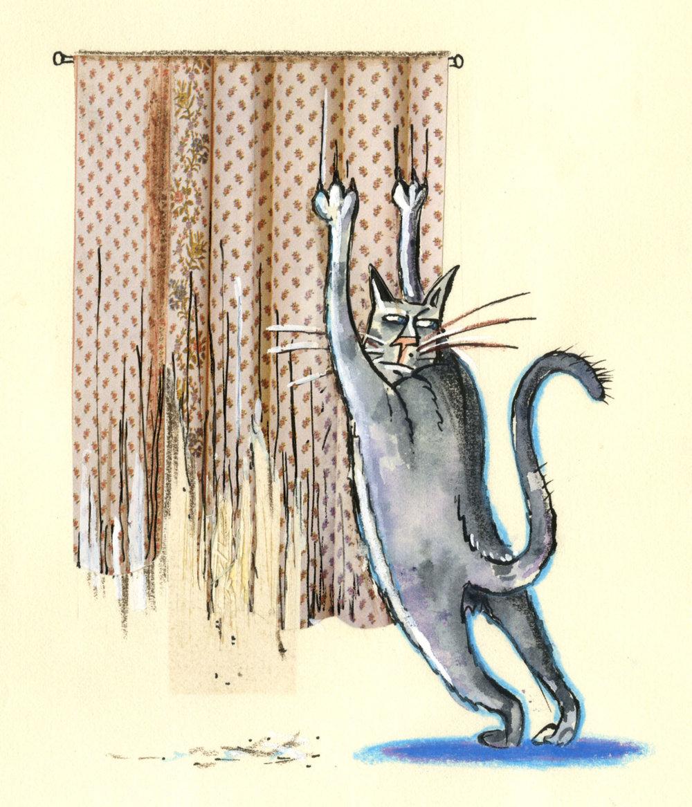cat_scratching001