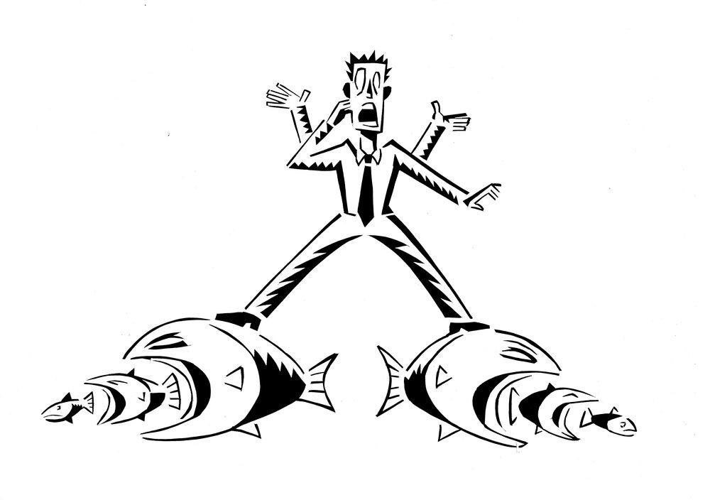 fish-rider.jpg