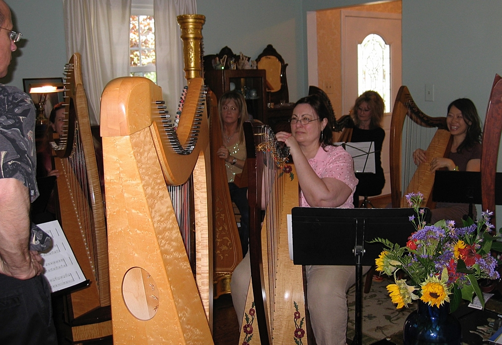 Adult harp ensemble     Write here...