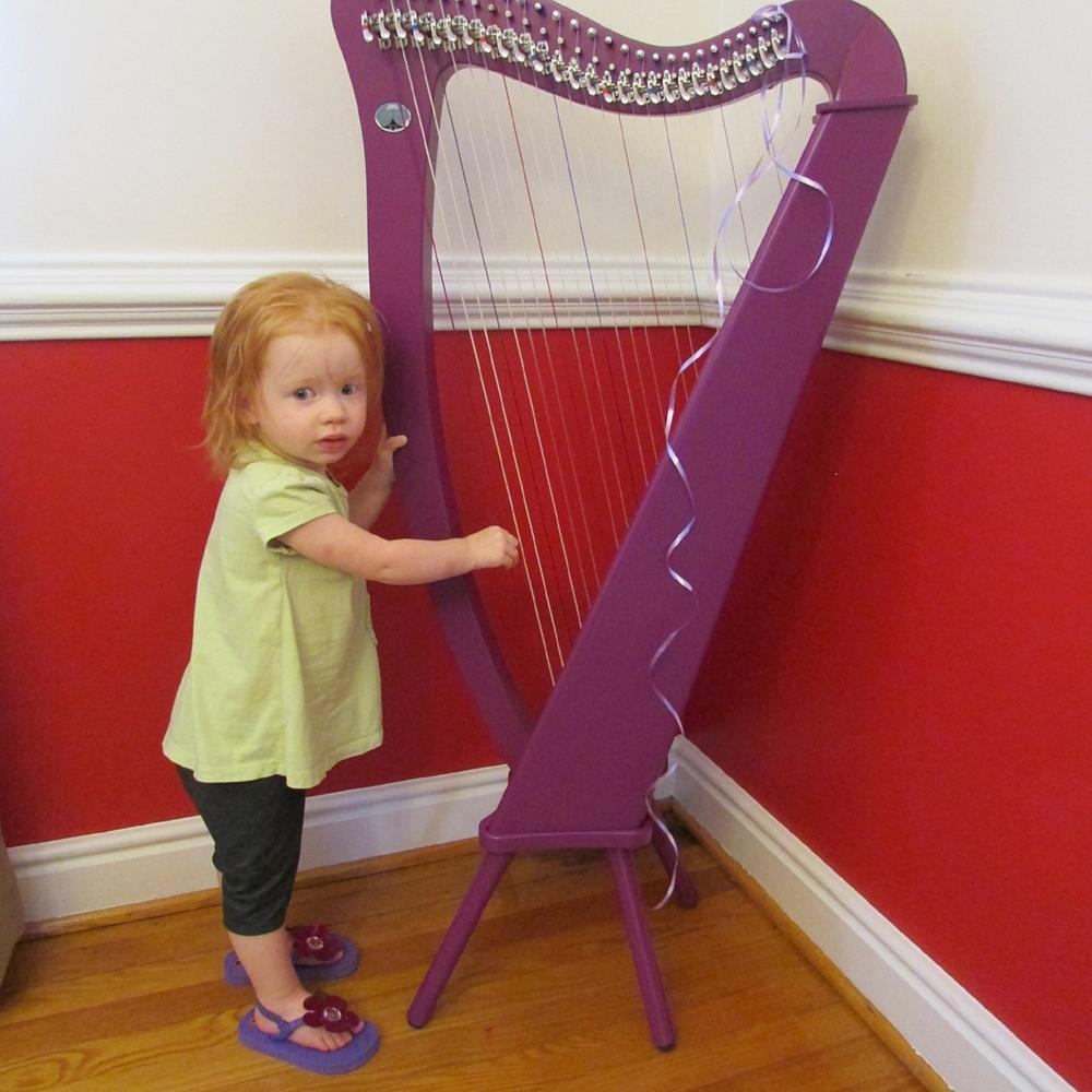 Teaching The Harp Harp Teacher Charleston Sc Harp Lessons
