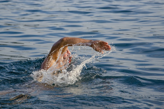 open water swimmer