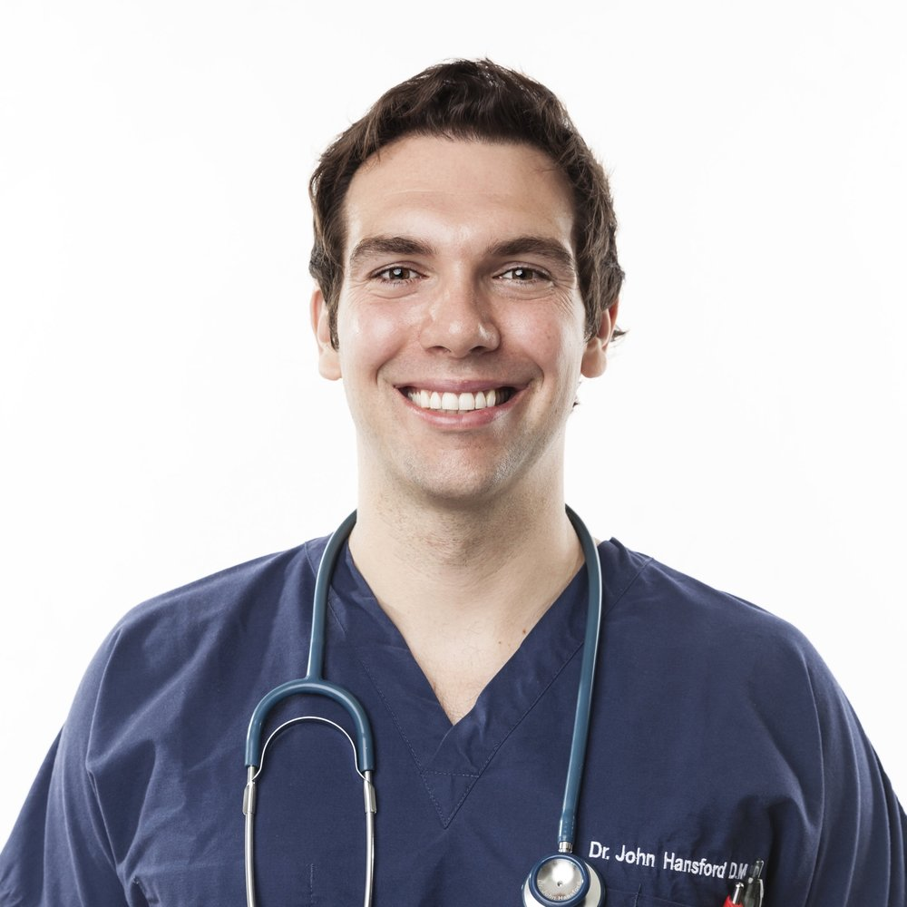 Dr. John profile photo