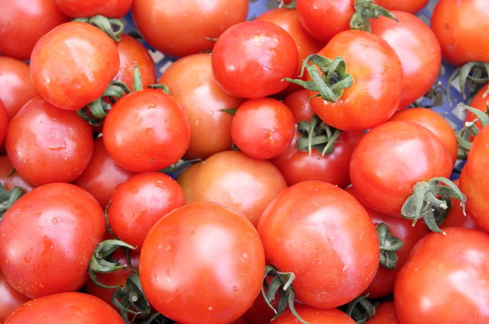 Tomaten L1000621.JPG