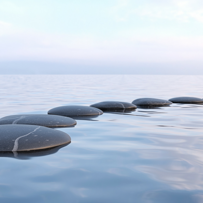 stepping stones.png