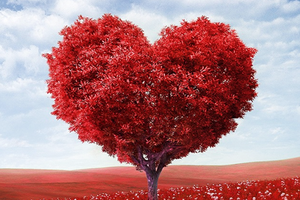 b2-440x293-site-image-authentic-love.png