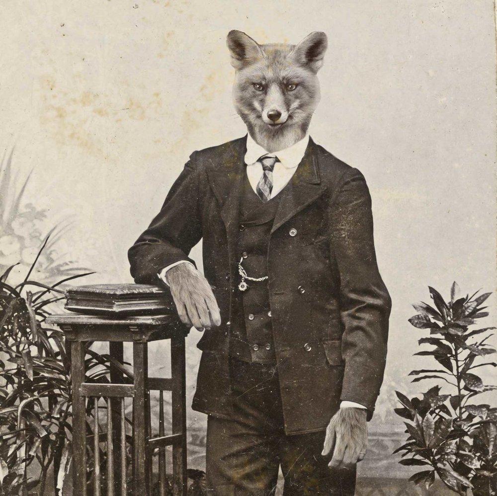 unlucky-fox-insta-CDV-07.jpg