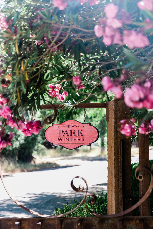 Park Winters Summer Wedding