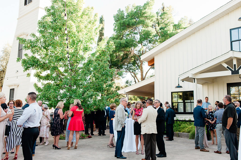 Park Winters Summer Wedding | Outdoor reception |  Wedding Cocktail Reception | Barn Wedding