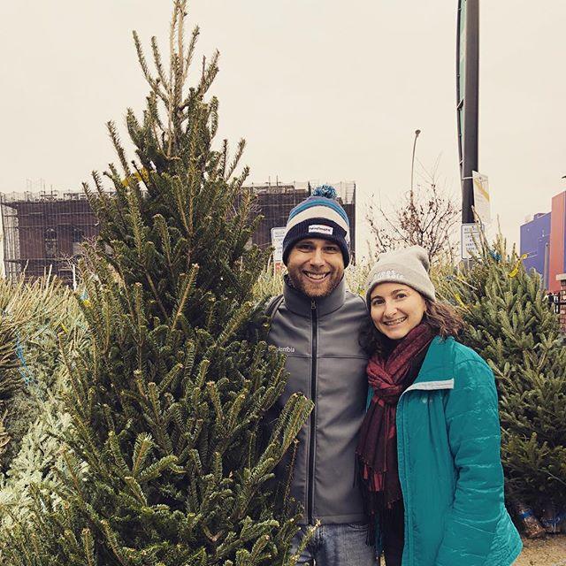 Operation Christmas Tree = rousing success 🎄🎄🎄