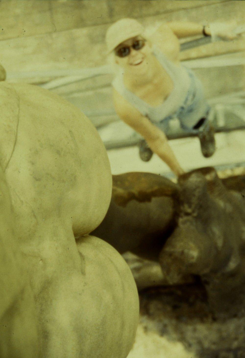 Bronze cast of Michelangelo's David sculpture