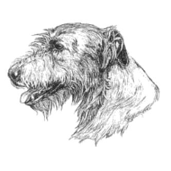Irish Wolfhound Club of the Willamette Valley