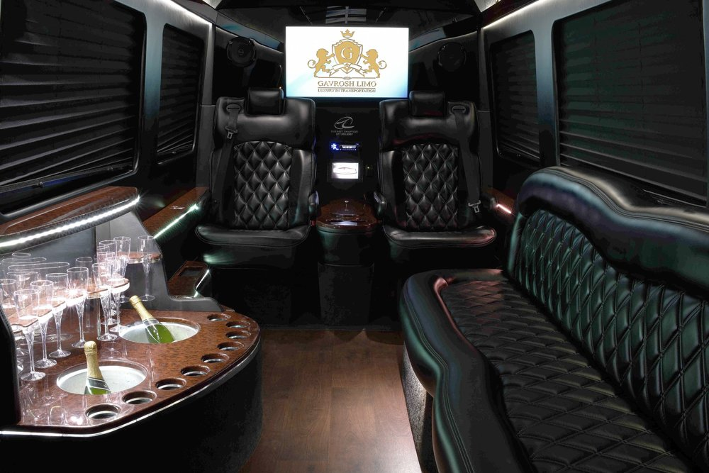 2016 Mercedes Sprinter Limo - Interior Click Picture for more information