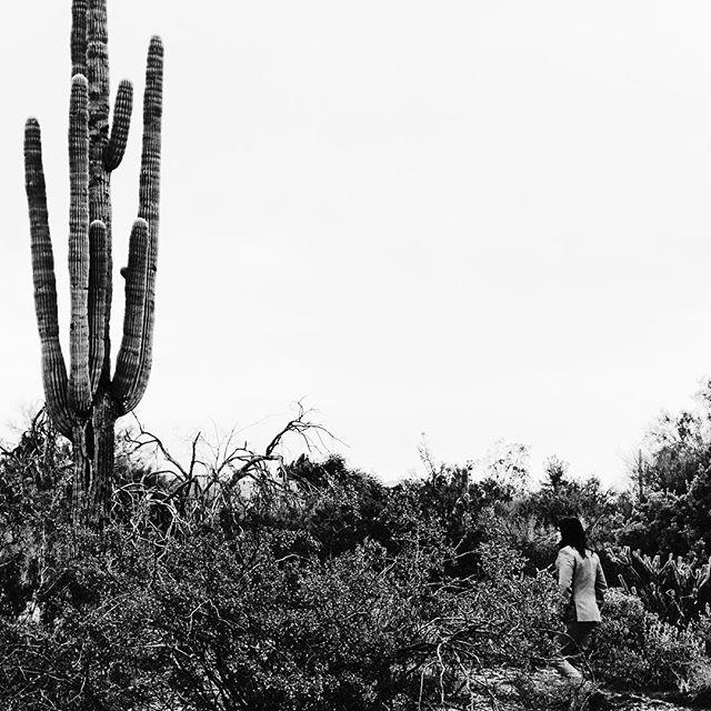 Finding peace in the desert 🌵  #love #art #life