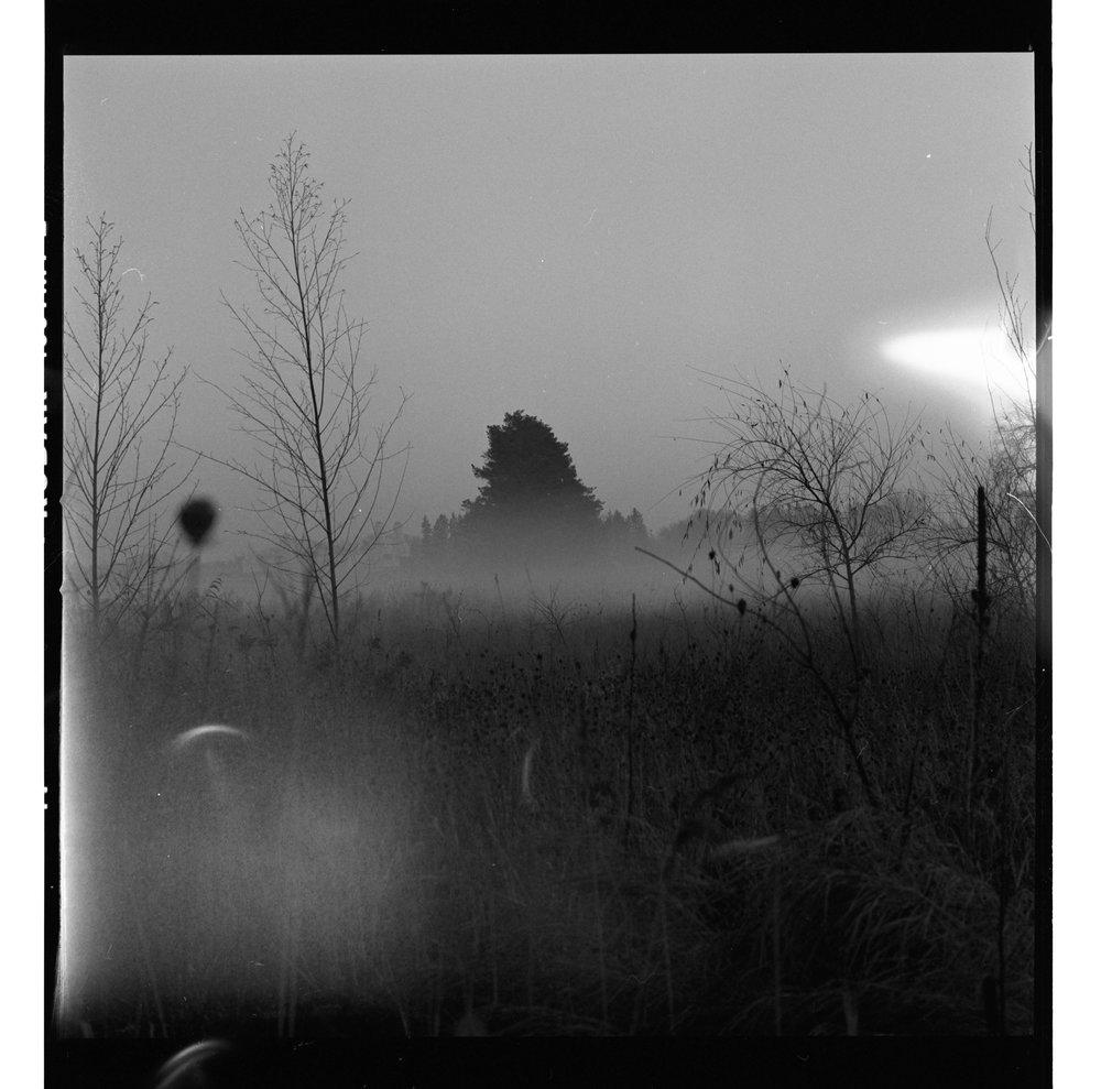 Film_edit-122.jpg