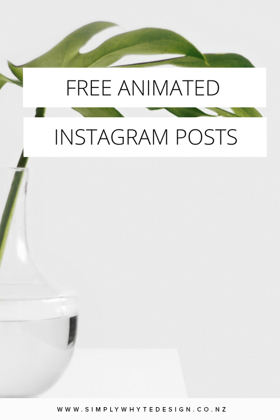 Simply Whyte Design_Auckland_web_design_Free-Animated-Instagram-Posts