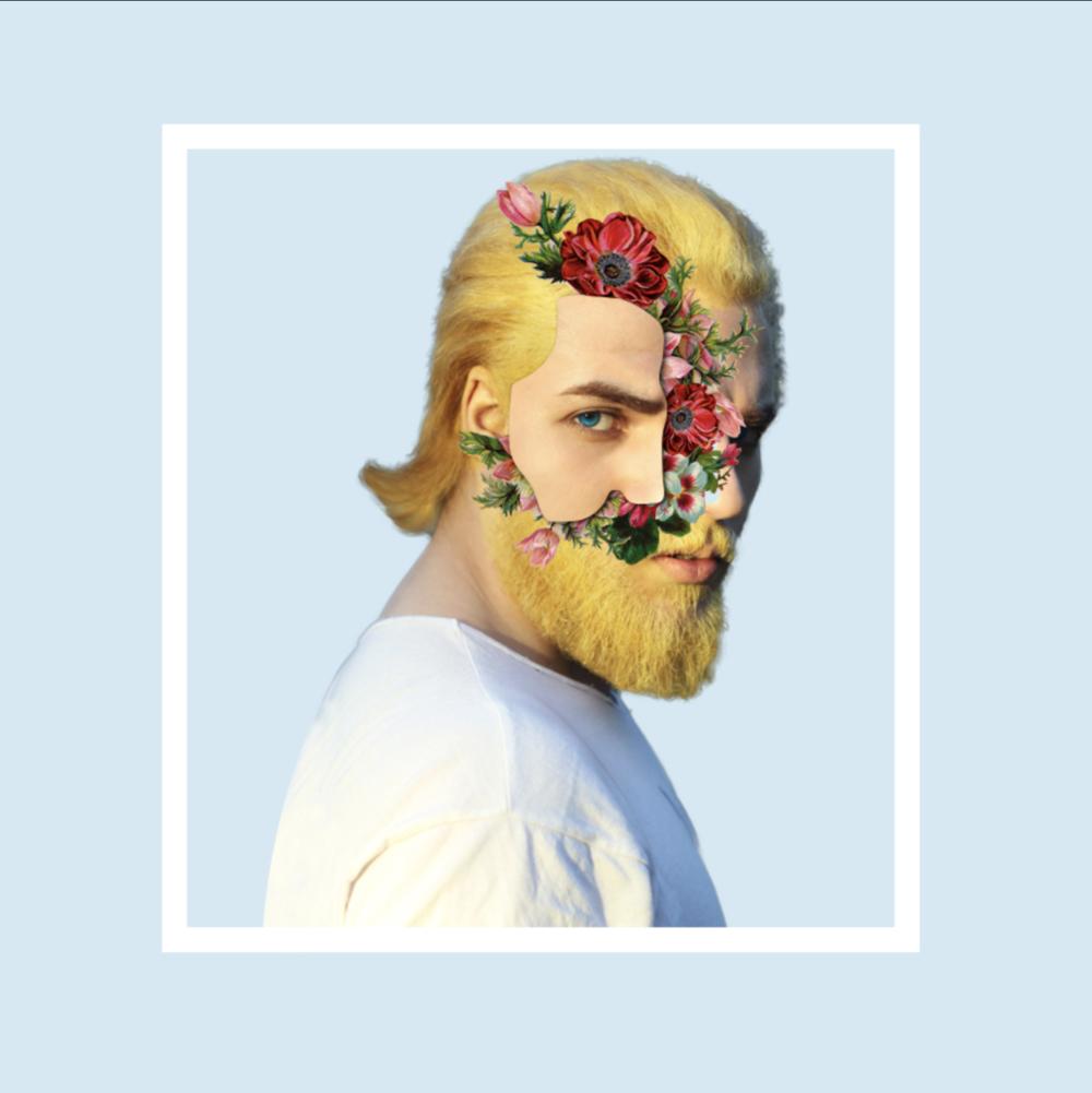 digital-collage-simply-whyte-design-nz-flower-faced-man-instagram.png