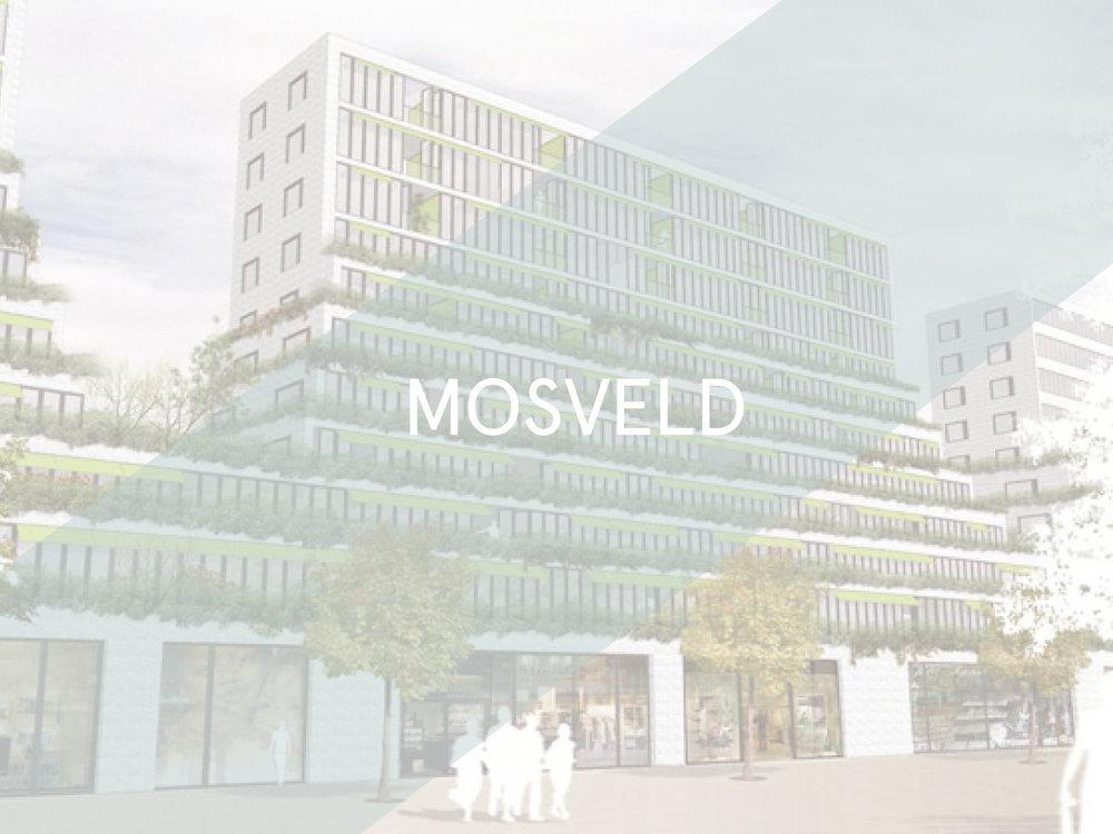 Mosveld_white.jpg