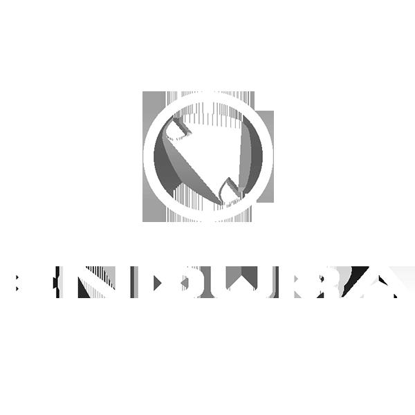 Endura.png
