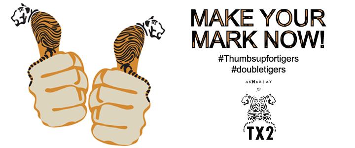 ThumbsUpForTigers-TX2-Banner-AsherJay.jpg