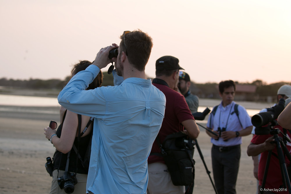 Birders exhibiting their expertise.