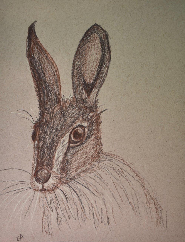 """""""Jack"""" 8x10 Prismacolor Pencil on toned paper."""