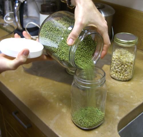 Pour dry beans into Jar.jpg