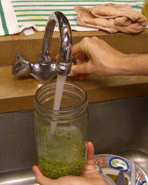Rinse & add water.jpg