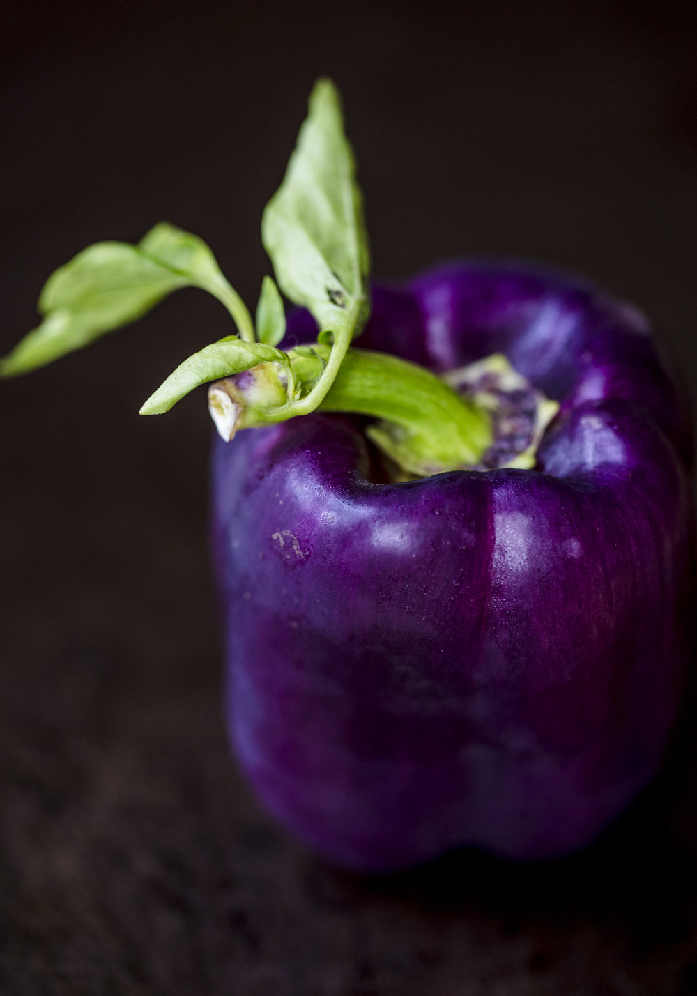 purple-pepper_0010.jpg