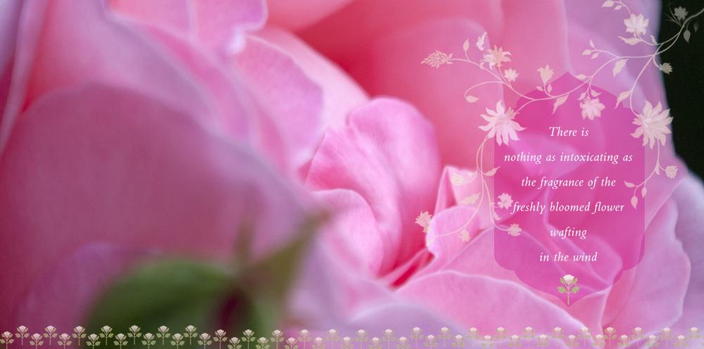 1homepggflower.jpg