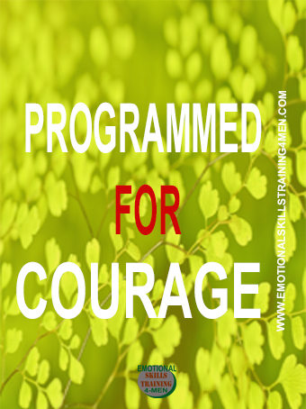 programmed for courage final.jpg