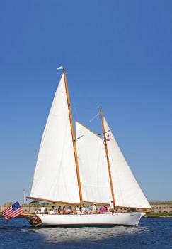 take a Harbor Sail or Cruise