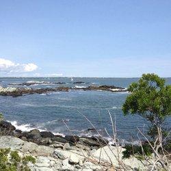 Explore Sachuest Point National Wildlife Refuge