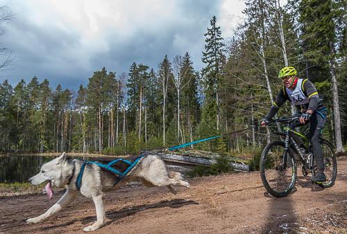 Koiravaljakkourheilu / Ohkola kevät 2017 22.4.2017