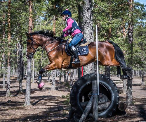 Kenttäratsastuksen maastokoe / Niinisalo 21.5.2017