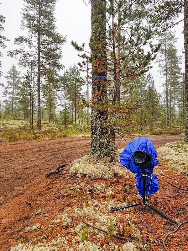 Vielä sunnuntai aamuna suojasin remote-kameran sateelta tai ainakin sumulta ja puusta tippuvalta vedeltä. Tässä kohtaa kuvasin DR8 luokkaa tiukassa S-mutkassa. Itse olin pääkameran kanssa tuolla kuvan keskellä uran toisella puolen.