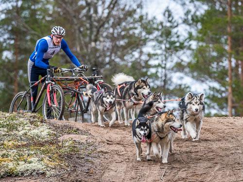 Valjakkourheilu / Jämin kevätkisa 2018
