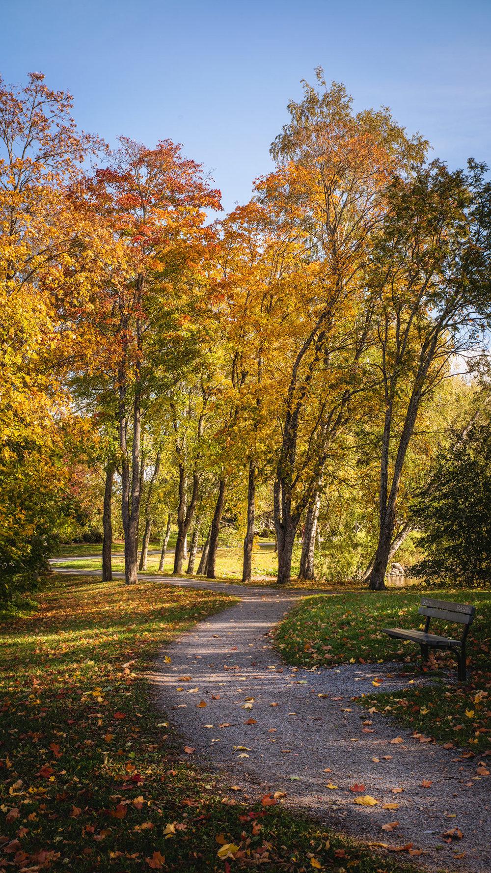 Tampere Arboretum